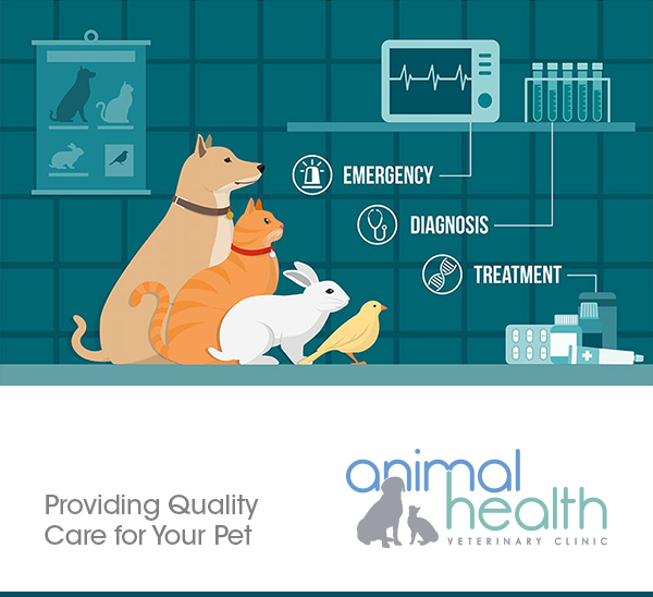 Animal Health Veterinary Clinic Program Supporter