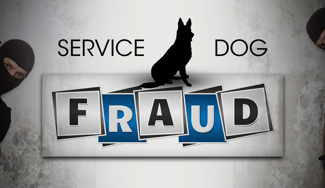 Service Dog Fraud Archives - K9 Partners for Patriots, Inc.