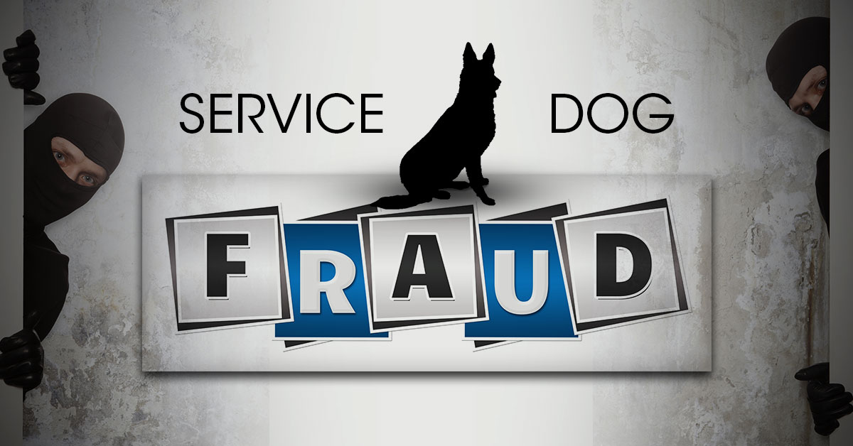 Service Dog Certification Scams K9 Partners For Patriots