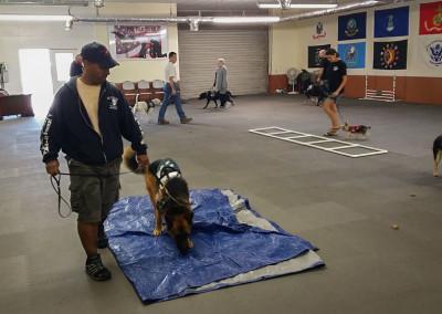 training-facility-nine