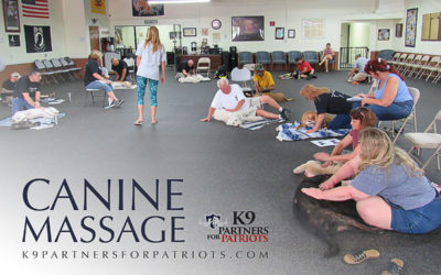 Benefits of Canine Massage Therapy